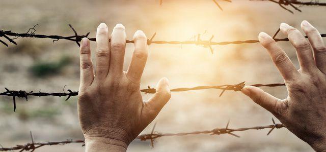 懲役刑の服役期間と仮釈放について